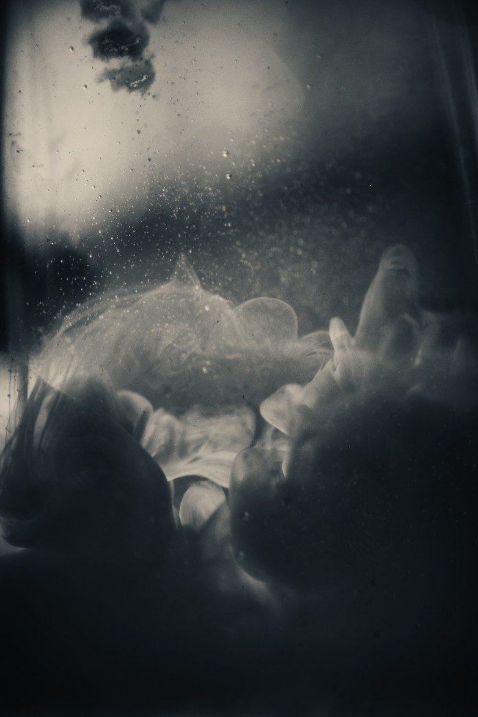 by Danilo Giannini / 753