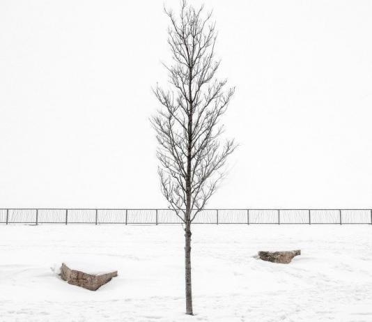 Minimalist Photography by Steve Scalone / 1044
