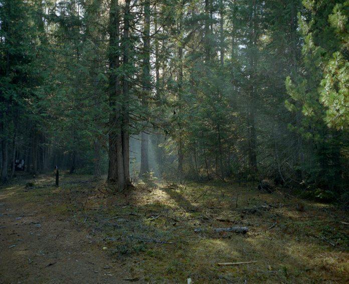 Photography by Patrick Warner / 4628