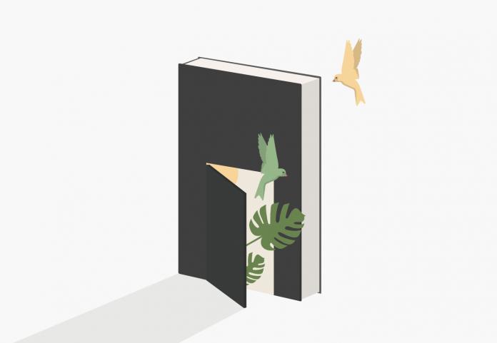 Illustration by Marta D'Asaro / 4789