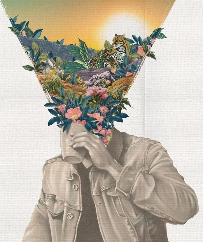 Collage by Kyle Cobban / 5015