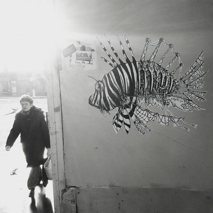 Public Art by Ardif / 6197
