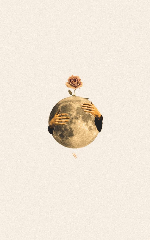 Collage by Areej Salem / 13491