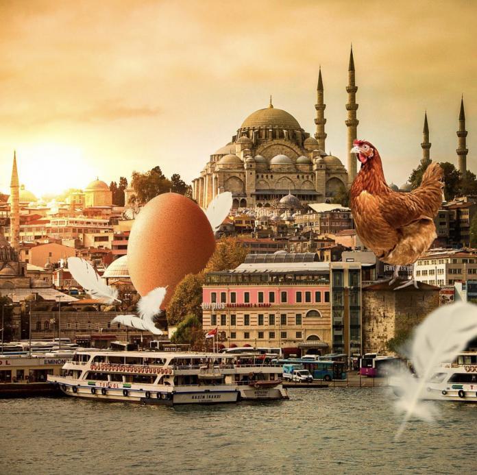 Collage by Samet Birkan / 14222