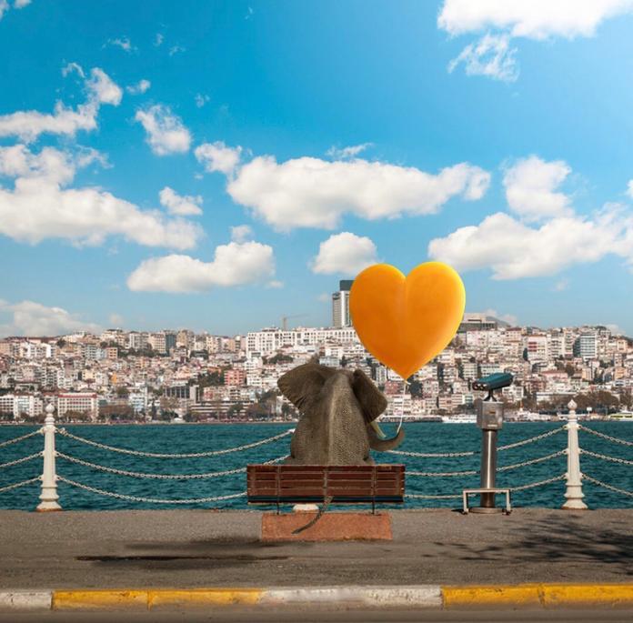 Collage by Samet Birkan / 14223