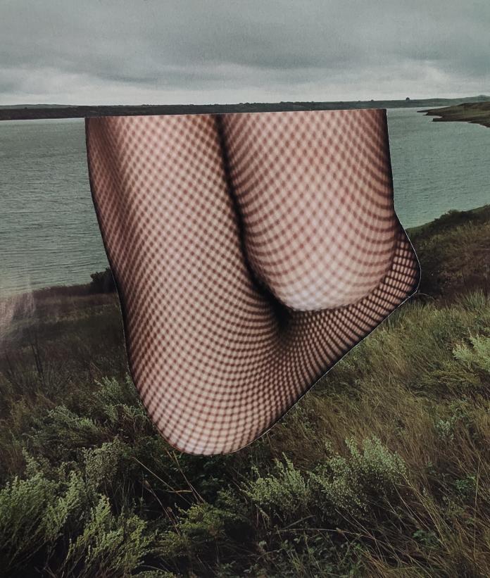 Collage by Ruonan Yan / 14460