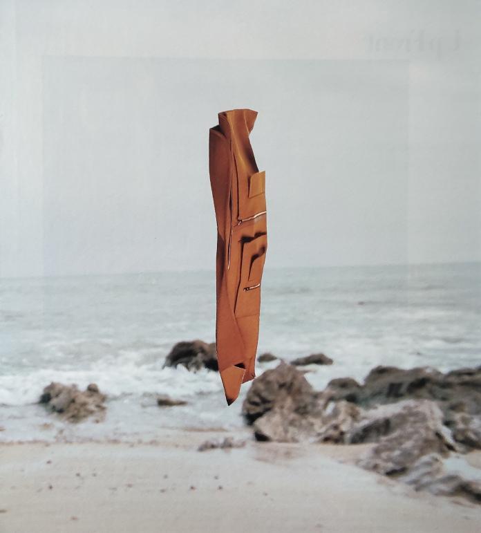 Collage by Ruonan Yan / 14462