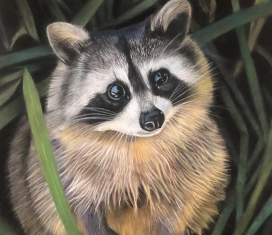 Animal Painting by Carina Imbrogno / Artist 14705