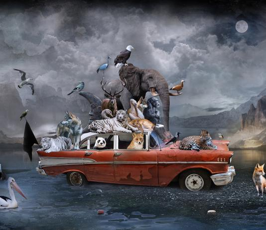 Digital Collage by Marcin Owczarek / Artist 14711