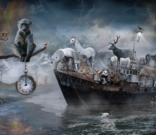 Digital Collage by Marcin Owczarek / Artist 14713