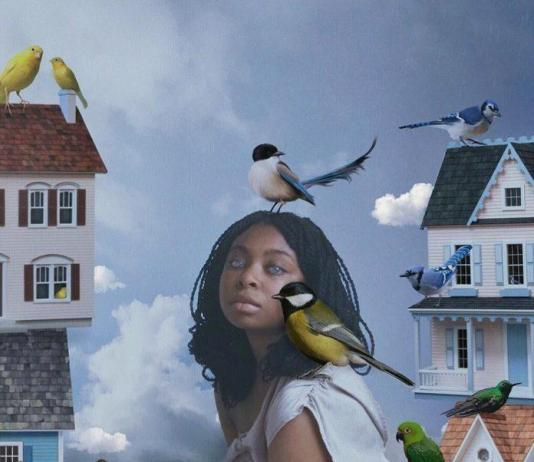 Bird Collage by Deandra Lee / 10938