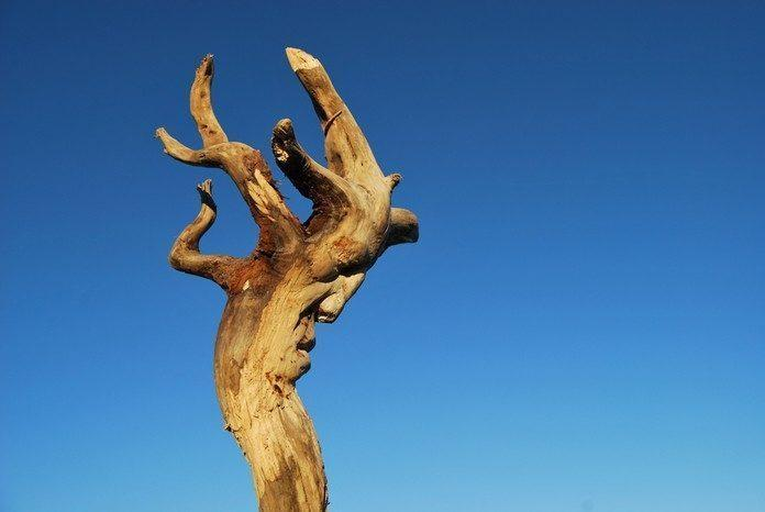 Sculpture by Eudald de Juana Gorriz / 11262