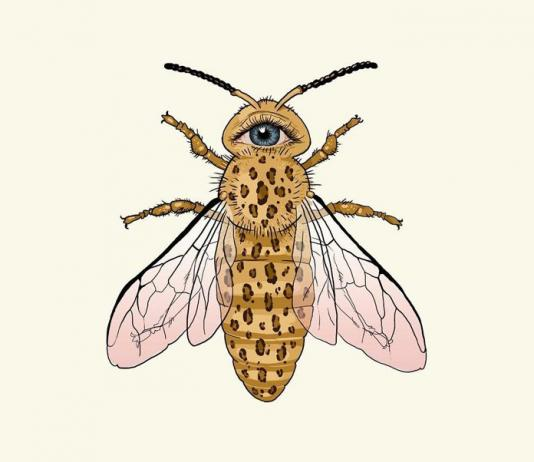 Animal Illustration by Useless Treasures / 10359