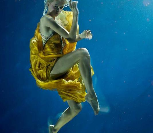 Underwater Photography by Zena Holloway / Artist 10076