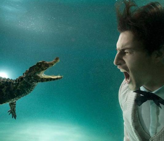 Underwater Photography by Zena Holloway / Artist 10080